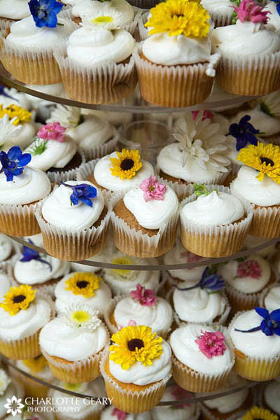 Wedding cupcakes with yellow, blue, and pink flowers