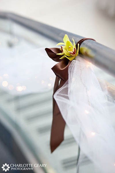 Brown ribbon with green orchid and tulle