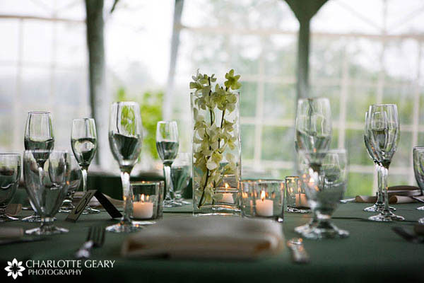 Green orchid wedding centerpiece