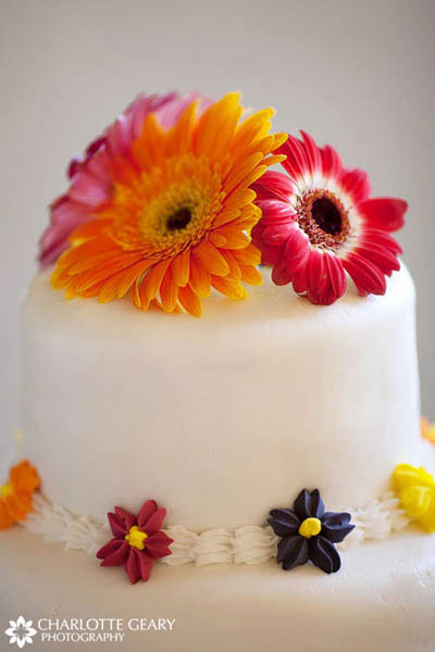 Gerbera daisy cake topper