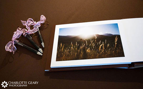 Engagement portrait guestbook