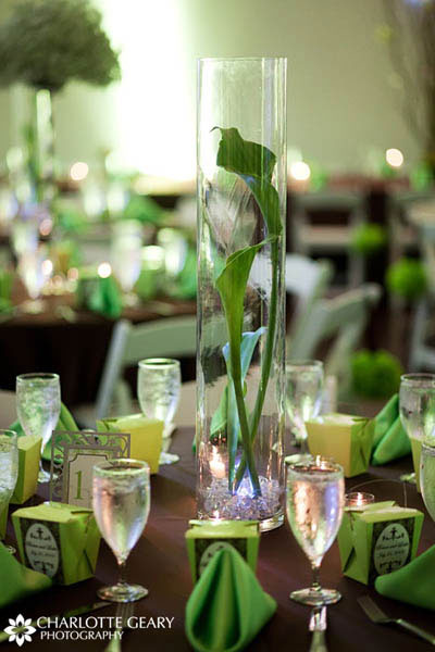 Green calla lilies in a tall glass vase