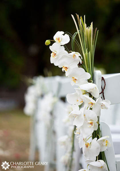 White orchids as ceremony decoration