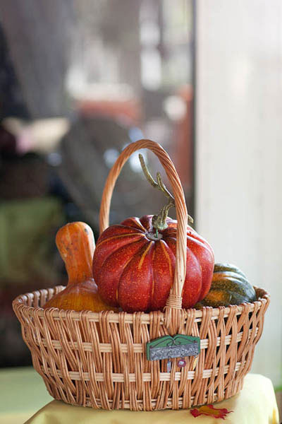 Basket of gourds on autumn wedding buffet