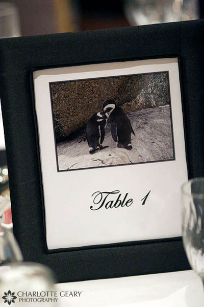 Table numbers for a penguin-themed wedding